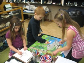 Natural History Centre activities.