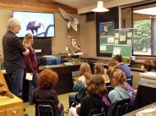 Herring life cycle presentation at the Natural History Centre